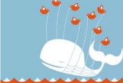 某些用户的Twitter已关闭